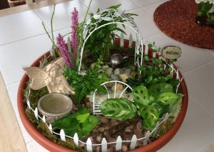 Mini Gardens 12