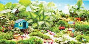 Mini Garden Gallery 16