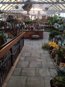 greenhouse8 3