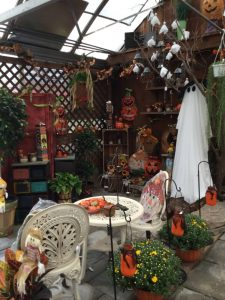 Fall Greenhouse 1