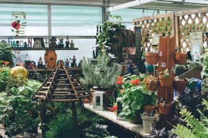 Spring Greenhouse 12