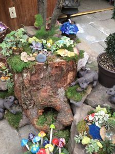 Mini Garden Gallery 19