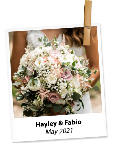 hayley-fabio