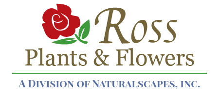 Ross Plants & Flowers